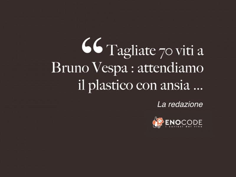 Tagliate 70 viti a Bruno Vespa:attendiamo  il plastico con ansia