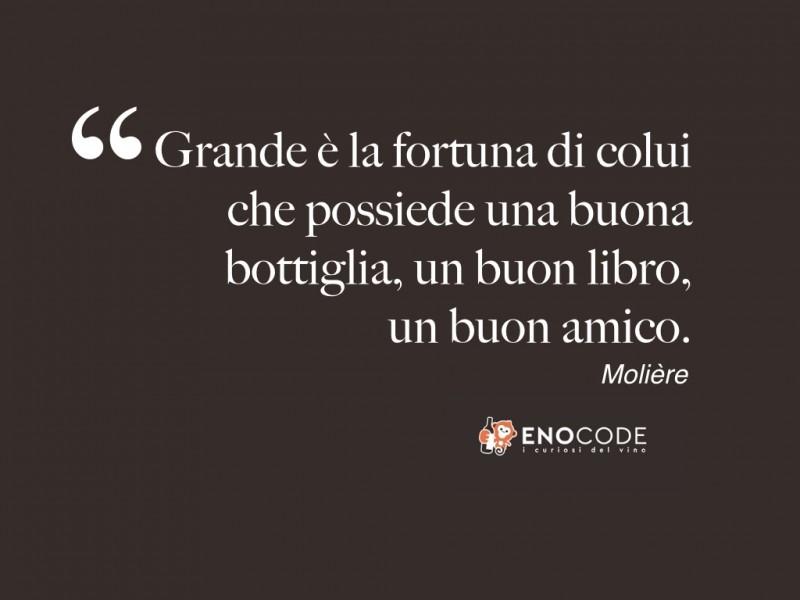 Grande è la fortuna di colui che possiede una buona bottiglia, un buon libro, un buon amico Molière.